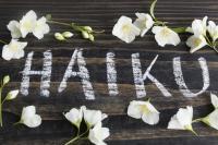 Méditation active, un outil de plénitude par SylvieLAIR, psychologue